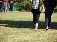 Ići po travi ili ne ići po travi, PITANJE JE SAD.