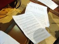 Danas 10.svibnja 2011. godine u višenamjenskoj prostoriji u OŠ Rivarela nastupit će najtalentiraniji sudionici orkestralne radionice i skladateljske radionice