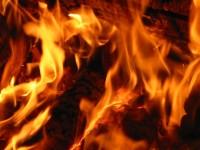 Mnogi od vas će se zapitati kako je nastala vatra, no neki ili već znaju ili ih ne zanima. Nas je zanimalo kako je nastala vatra, pa smo odlučili napisati članak o vatri. Prema arheološkim nalazima, pretpostavlja se da je vatra ljudima bila poznata prije približno 300 000 godina. U […]